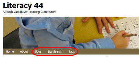 Blogs, Site Search and Tags displayed on Campus homepage